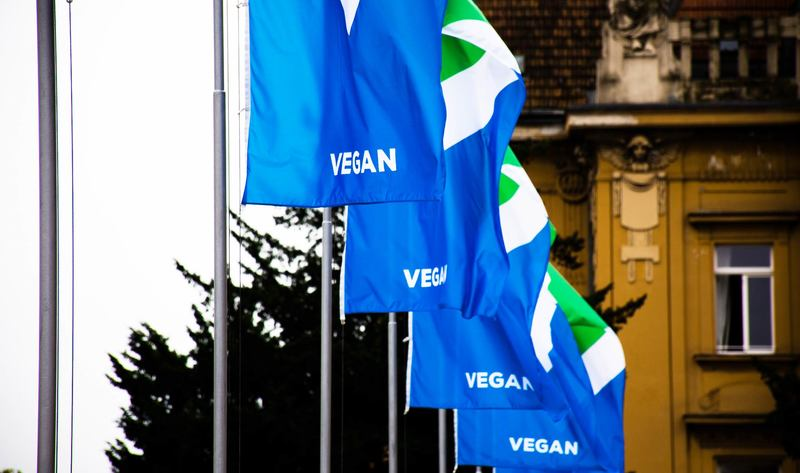 Croatia S Capital City Outfitted In Vegan Flags And Colors For World Vegan Day Vegos